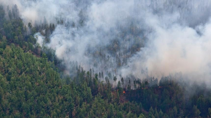 Губернатор Краснодарского края заявил, что впожарах наКубани виноваты туристы