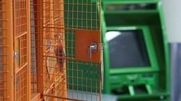 Видео: Двое мужчин входе ограбления взорвали банкомат вподмосковном «Дикси»