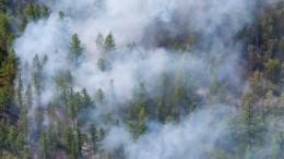 Пожар взаповеднике «Утриш» вКраснодарском крае локализован