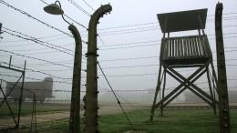 «Оскорбительно иболезненно»: Музей Освенцима осудил флешмоб охолокосте