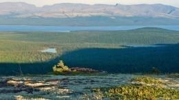«Уже началось!»— Эколог Юлий Добрушин обопасности оттаивания болот втундре