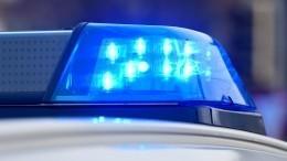 «Таскал пополу ивыкручивал руку»: Москвич напал наребенка из-за игрушки