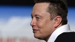 Илон Маск показал успешно чипированную свинью