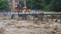 Десять человек погибли вовремя наводнения вТурции