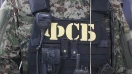 Один из13 подозреваемых вподготовке терактов стал фигурантом уголовного дела