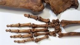 Мужчина раскапывал могилы под Красноярском ипродавал кости, выдавая ихзамощи