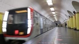 Упавший нарельсы пассажир парализовал движение вмосковском метро
