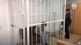 Мать зверски избитого мальчика изОмска заключили под стражу