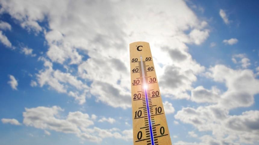 Гидрометцентр предупредил о«всплеске тепла» вцентре России