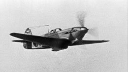 Герои воздушных боев: поисковики обнаружили останки пилотов времен ВОВ