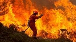 Масштабные природные пожары вышли из-под контроля вИспании