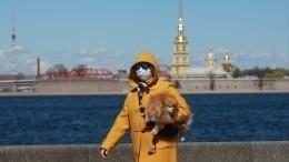 «Унас жители особые»— Петербург готовится кновым достижениям после пандемии