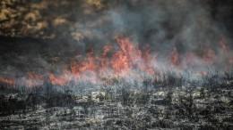 Видео: Сотня сотрудников МЧС навертолетах ибульдозерах тушит пожары вМагаданской области