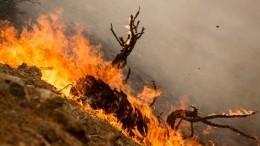 Смог отлесных пожаров может накрыть отдельные районы Якутии