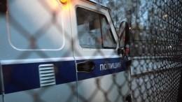 ВЛенобласти мигрант-наркоман выпрыгнул сдесятого этажа уходя отполиции— видео