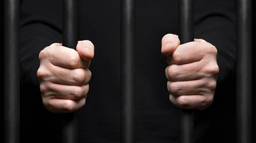 «Справедливая Россия» предлагает вернуть смертную казнь запедофилию