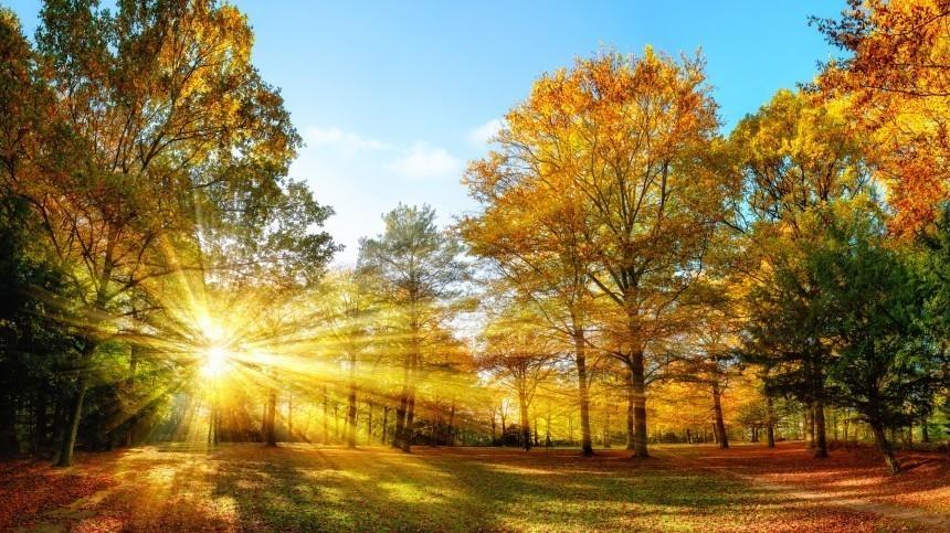 ВСеверном полушарии Земли наступила астрономическая осень