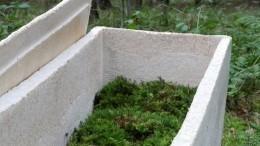 Забота обэкологии или способ нажиться? «Живые гробы» изгрибов создали вНидерландах