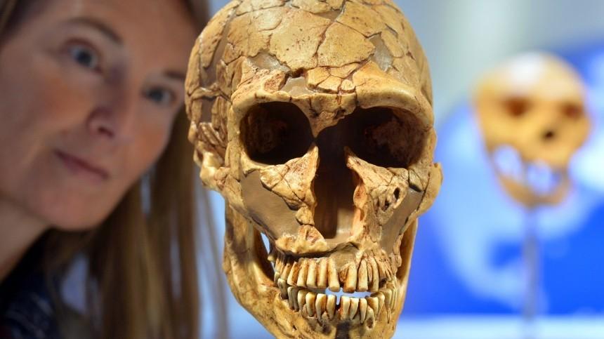 Зараженные предки: откаких инфекций страдали иумирали древние люди?