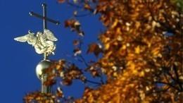«Бабье лето» вПетербурге прогреет воздух на5-6 градусов выше нормы