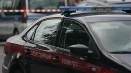 Глава IT-компании убил омского хоккеиста ударом сноги вголову изащитил молодежь