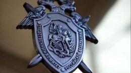 Уголовное дело обубийстве 9-летней девочки возбуждено вНижегородской области