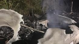 Названа возможная причина крушения самолета вХарьковской области