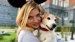 «Ненужные животные»: Настя Задорожная спасла выброшенных натрассу собак