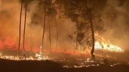 Вкрупных пожарах под Воронежем подозревают местных бизнесменов