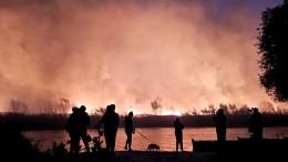 До85 гектаров увеличилась площадь природных пожаров вВоронежской области