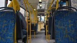 Бойня втроллейбусе: Петербуржец избил напавшего накондуктора хулигана— видео