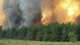 Вкрупном пожаре вселе под Воронежем подозревают поджигателей