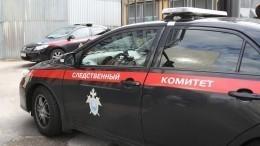 СКназначил посмертную психиатрическую экспертизу сгоревшей вНижнем Новгороде журналистке