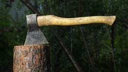 «После нас хоть трава нерасти»: ВИркутской области орудуют «железные дровосеки» без сердца исовести