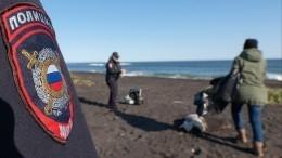Названа вероятная причина гибели морских животных наКамчатке