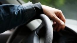 Водитель Kia Rio жестоко избил пассажирку вПетербурге— видео