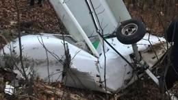СКвыдвинул несколько версий падения легкомоторного самолета под Пензой