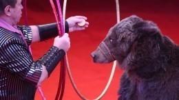 Смотритель цирка вМоскве умер после нападения медведя