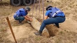 Уничтожение 500-килограммовой бомбы вЧечне попало навидео