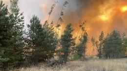 Огонь дугами охватил леса: рязанский полигон, где взрываются боеприпасы сняли свысоты птичьего полета