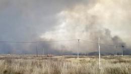МЧС мобилизует силы для тушения пожара вРязанской области
