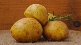 Большинство людей совершают вопиющую ошибку при варке картофеля