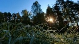 ВГидрометцентре рассказали, когда похолодает вевропейской части России
