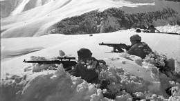 Годовщина битвы заКавказ: хроника событий глазами очевидцев