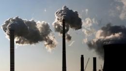 Томские ученые заменят уголь топливом изотходов