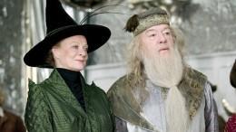 Тест: Какой тыпрофессор из«Гарри Поттера»?