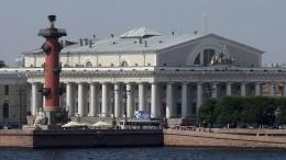 «Мощное криминальное поле»— Пиотровский ореставрации Биржи вПетербурге