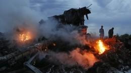 Посла РФвызвали вМИД Нидерландов из-за решения Москвы покрушению MH17