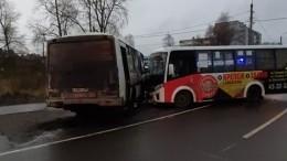 Два рейсовых автобуса столкнулись вАрхангельске— фото