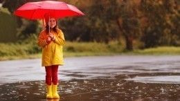Грядущая пятница удивит жителей европейской части России «необычной» погодой